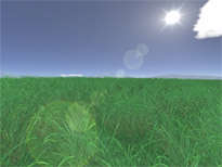 Green Fields 3D